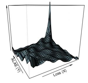 Copula Density Estimation